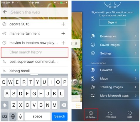 how to clear search suggestions on iphone