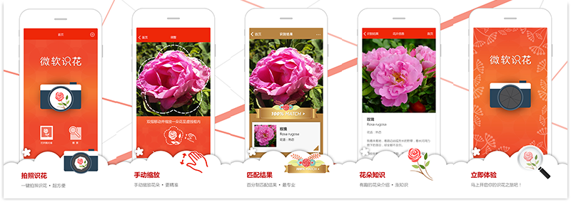 flower recognition app