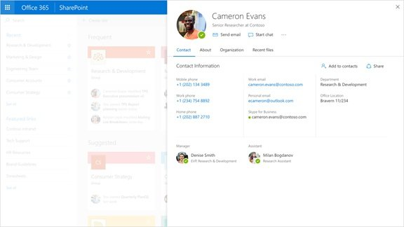 Office 365 profile experience