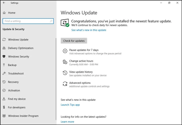 "Windows 10 Home v1903 may get ""Pause Updates"" option"